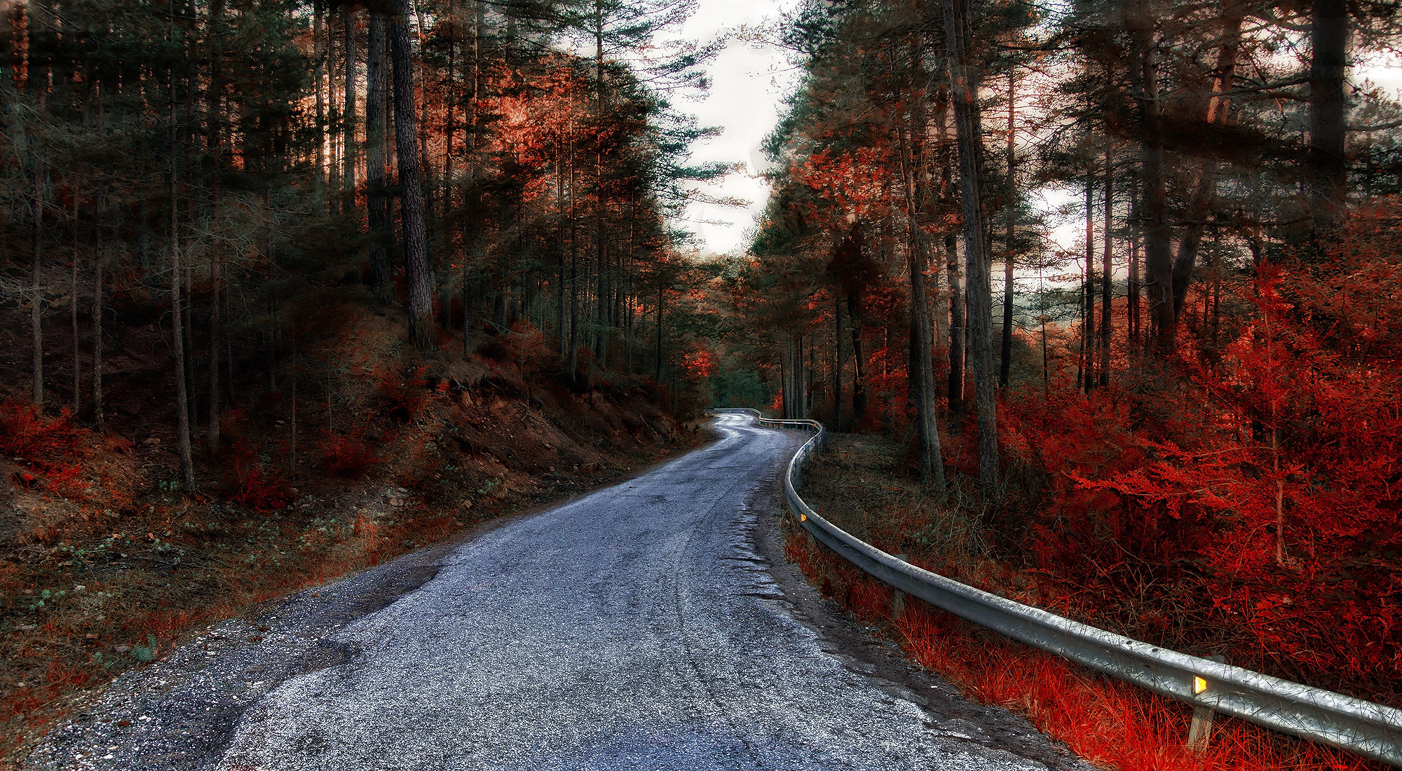Photograph The Road by Alfon No on 500px