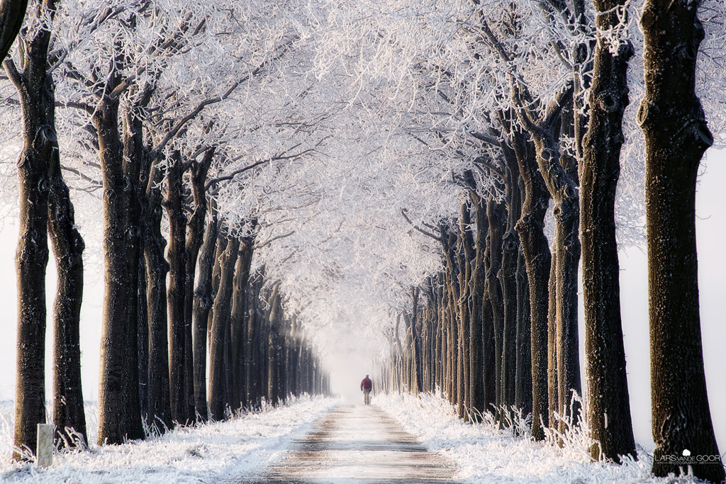 Photograph Endless Winter by Lars van de Goor on 500px