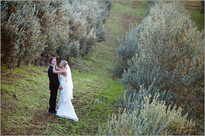 Photograph Wedding in Cape Town: Robyn & Greg by Lauren Kriedemann on 500px