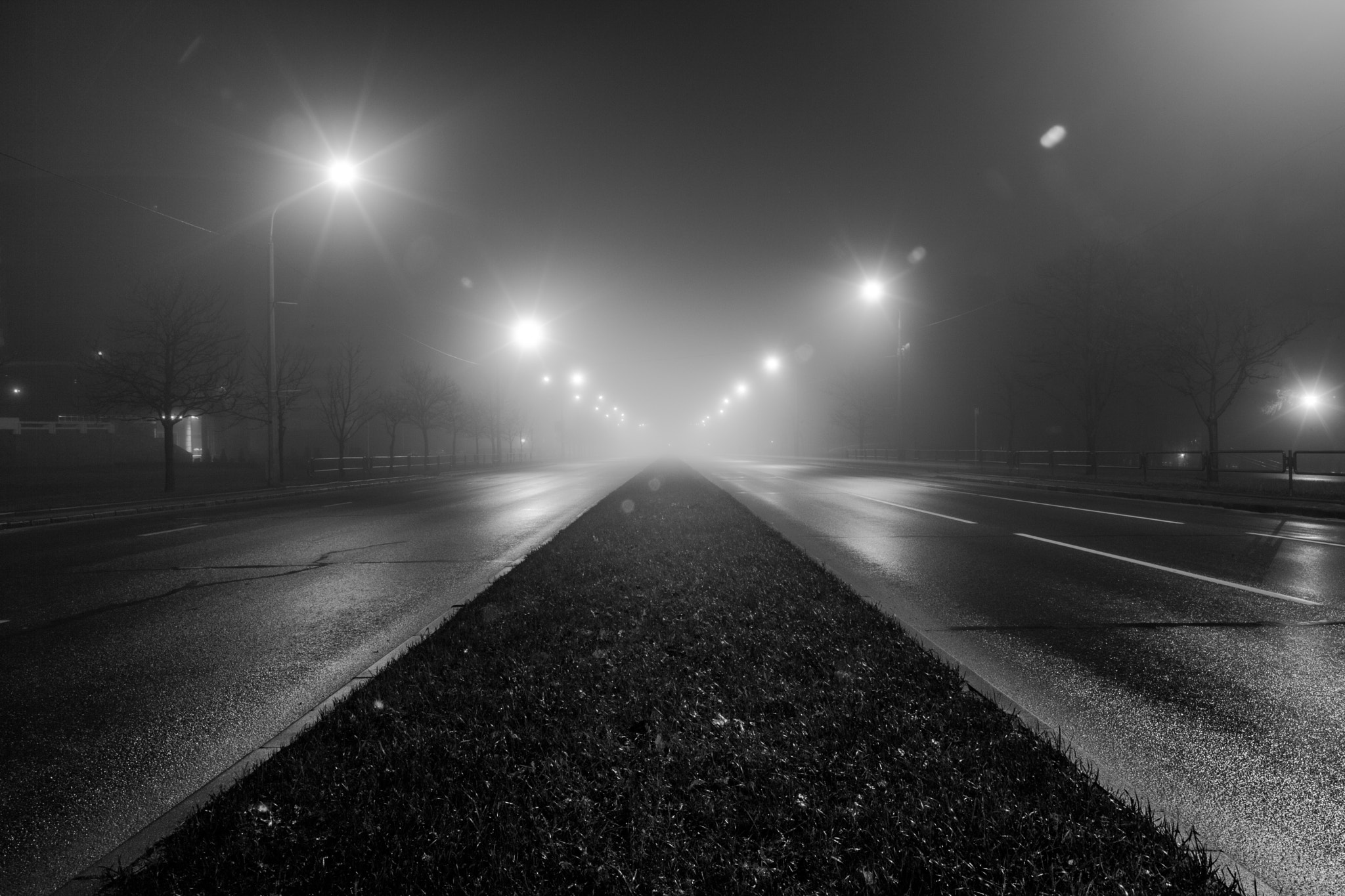 Photograph Foggy Urban Road At Night by Max Kontramax on 500px