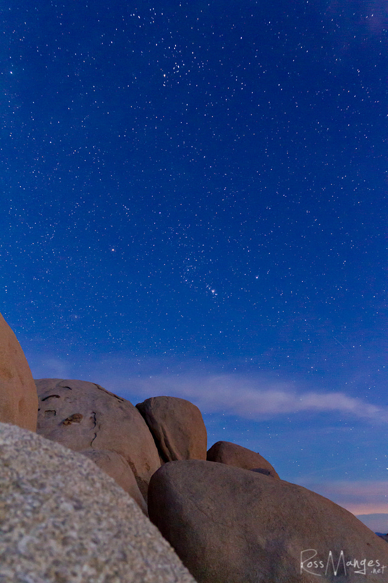 Photograph Twilight at Joshua Tree by Ross Manges on 500px