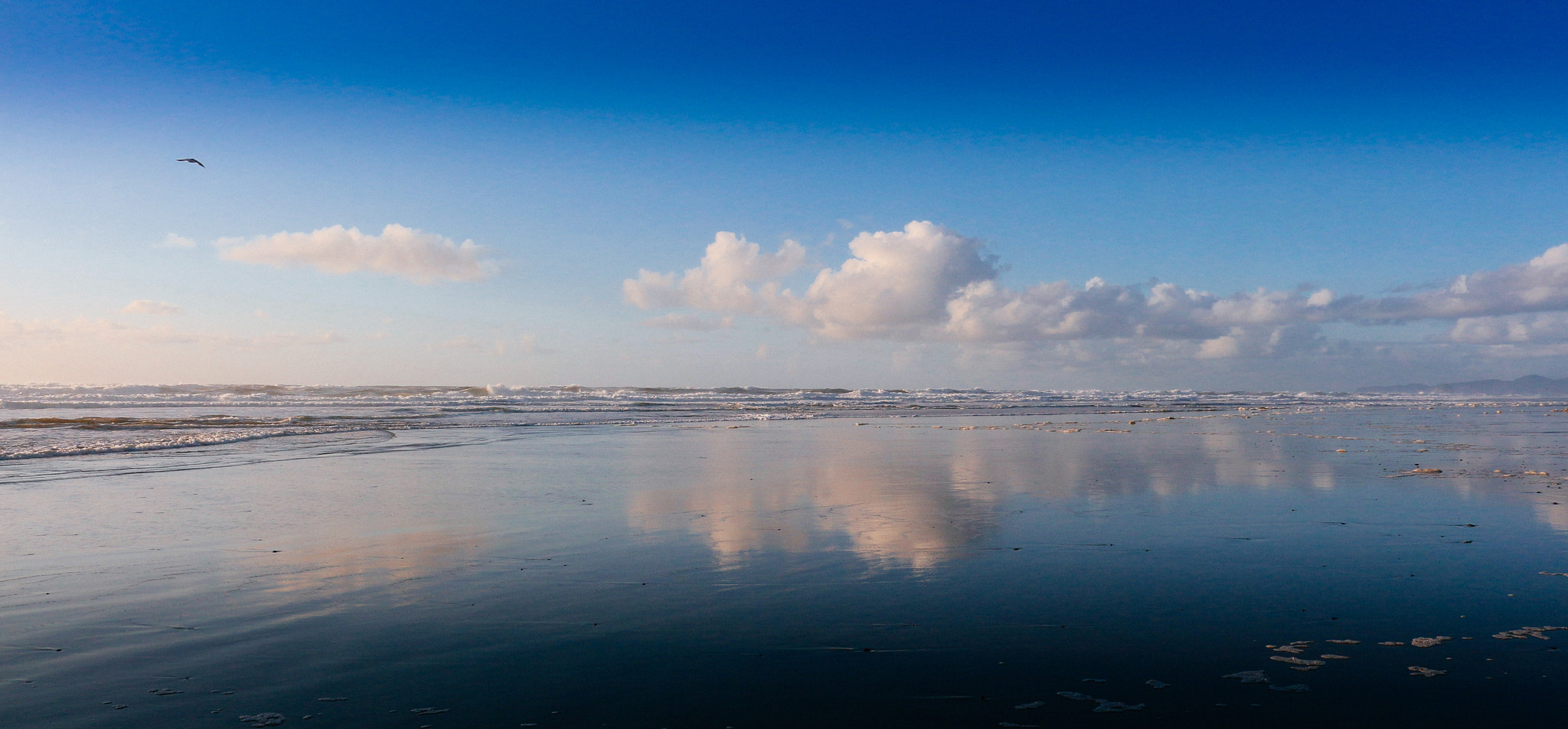 Photograph A study in blue by Mark Prince on 500px