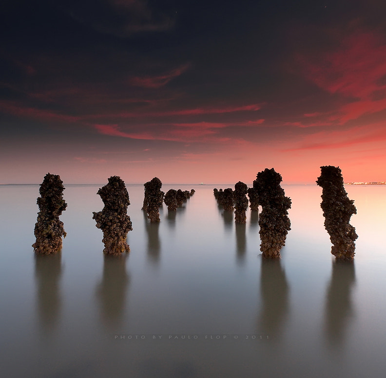 Photograph ALIENS by Paulo FLOP on 500px