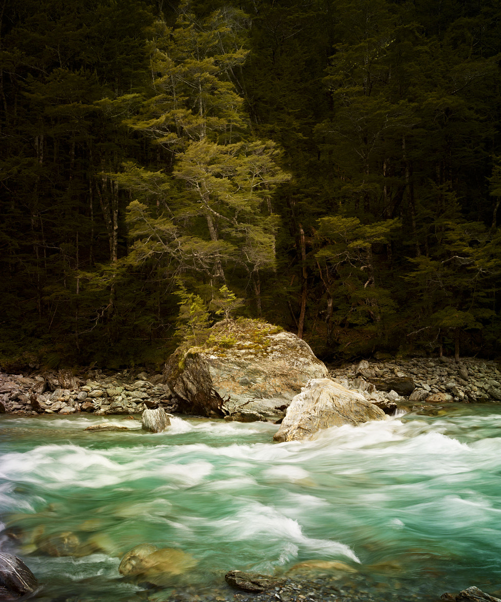 Photograph Tree and River by Kevin Raber on 500px