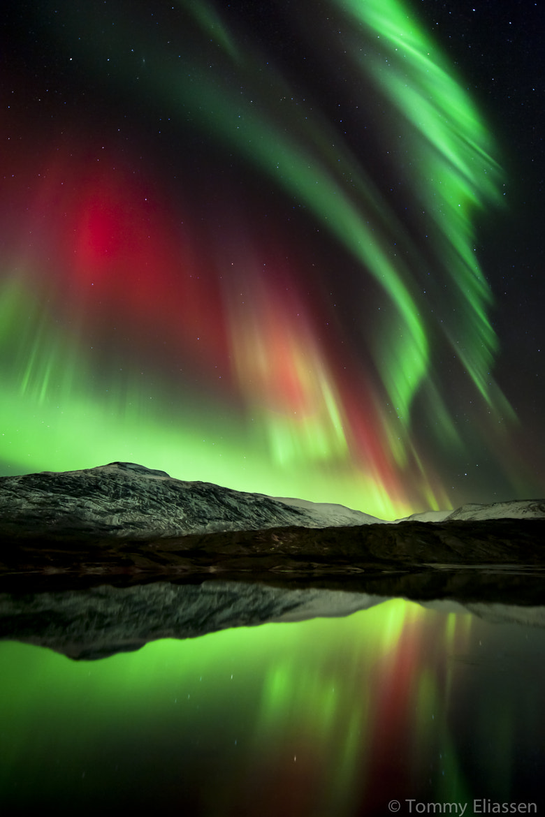 Photograph Magic night by Tommy Eliassen on 500px