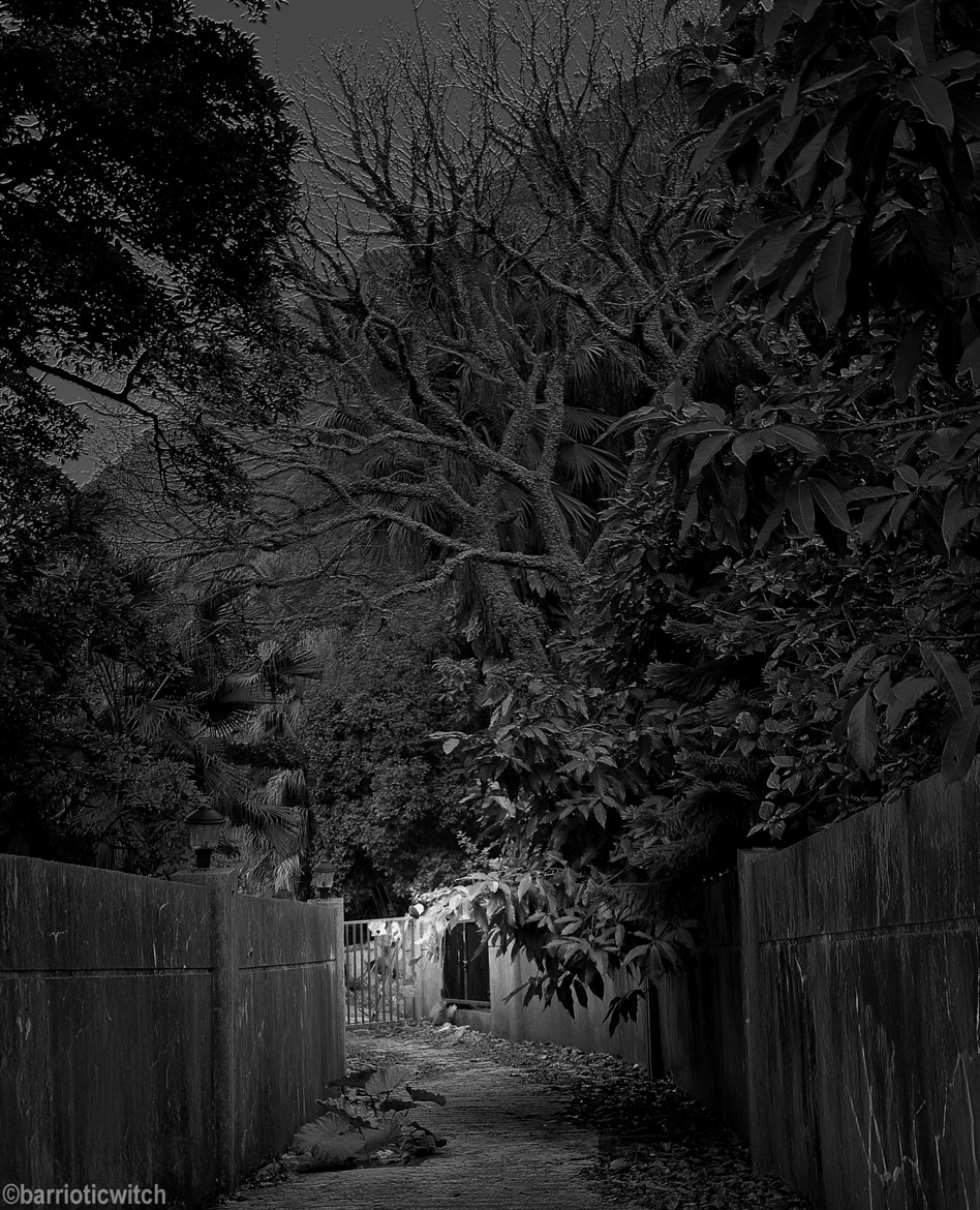 Photograph Ghost Gate by Barriotic Witch on 500px