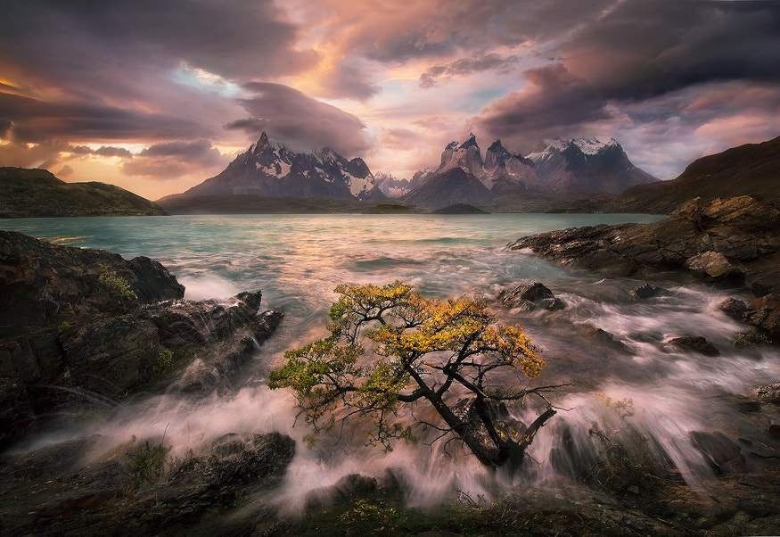 Photograph Audience of One by Marc  Adamus on 500px