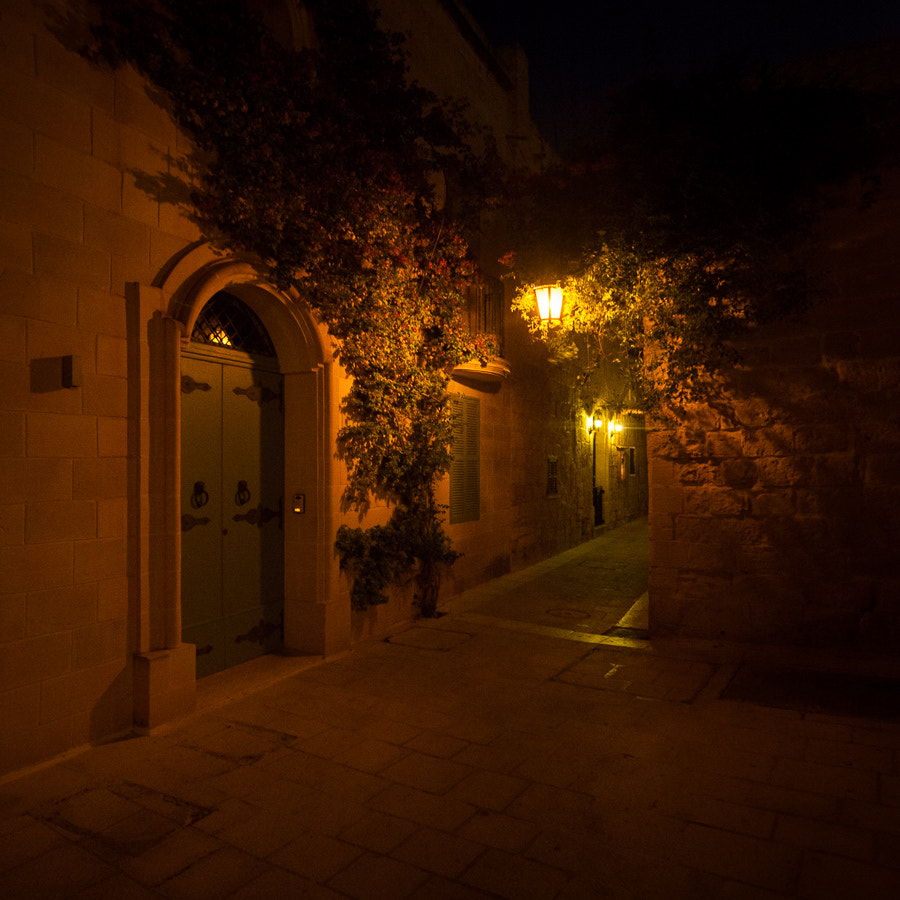 Photograph Mdina at night, Malta by Hans Woltering on 500px