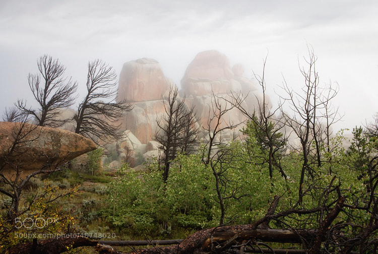 Photograph Vedauwoo by Cecil  Whitt on 500px