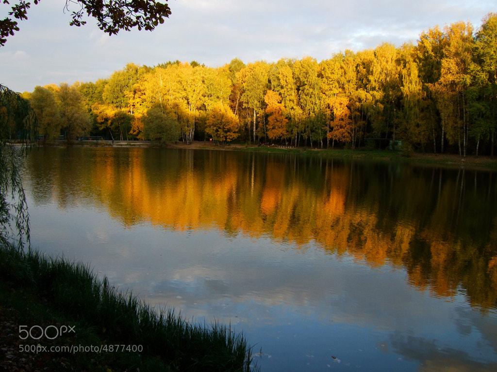 Photograph *** by Vadim Michkasov on 500px