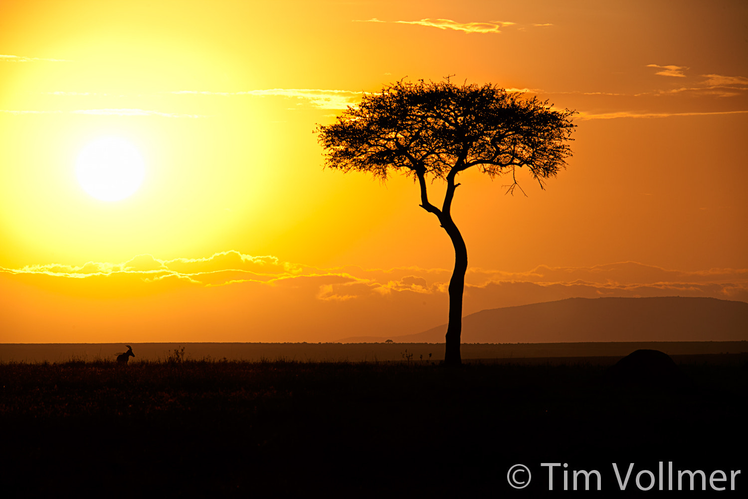 Photograph Sunrise in Kenya by Tim Vollmer on 500px