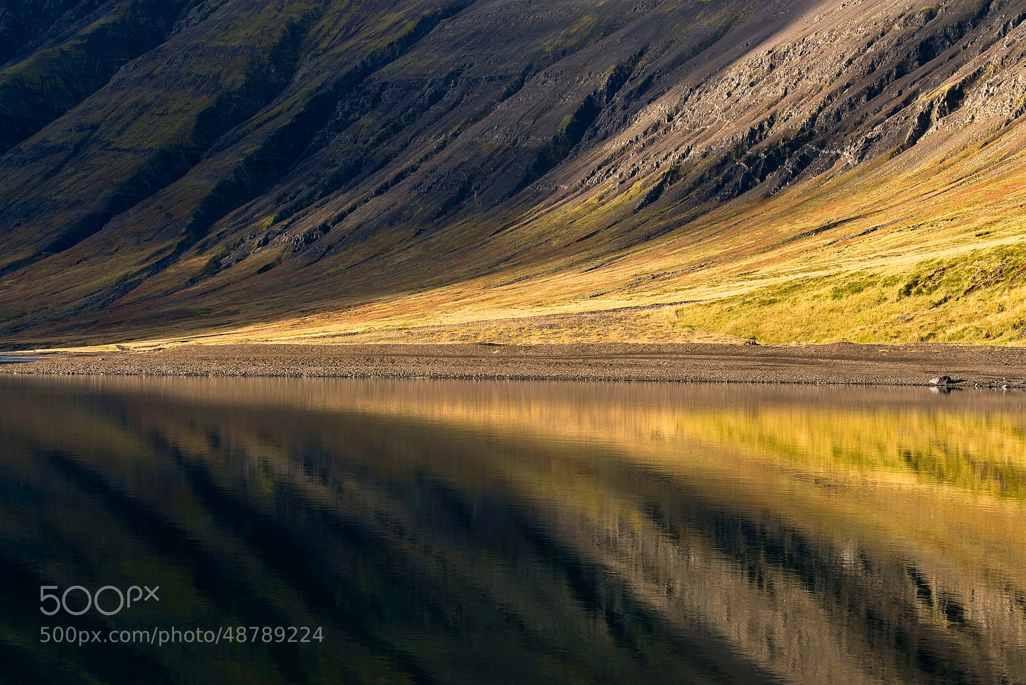 Photograph Just Relax by Daniel Bosma on 500px