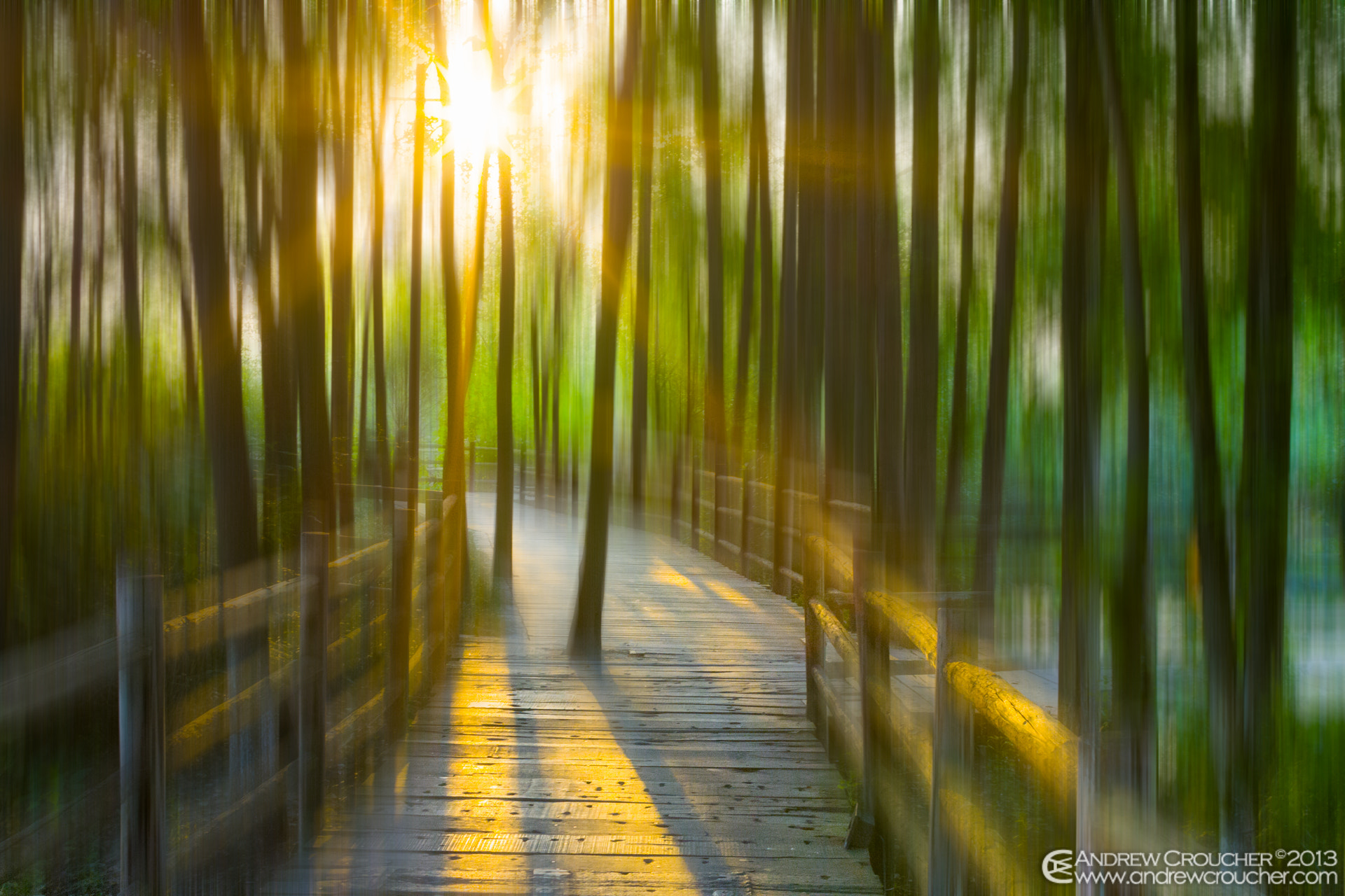 Photograph No way as way by &rü C on 500px