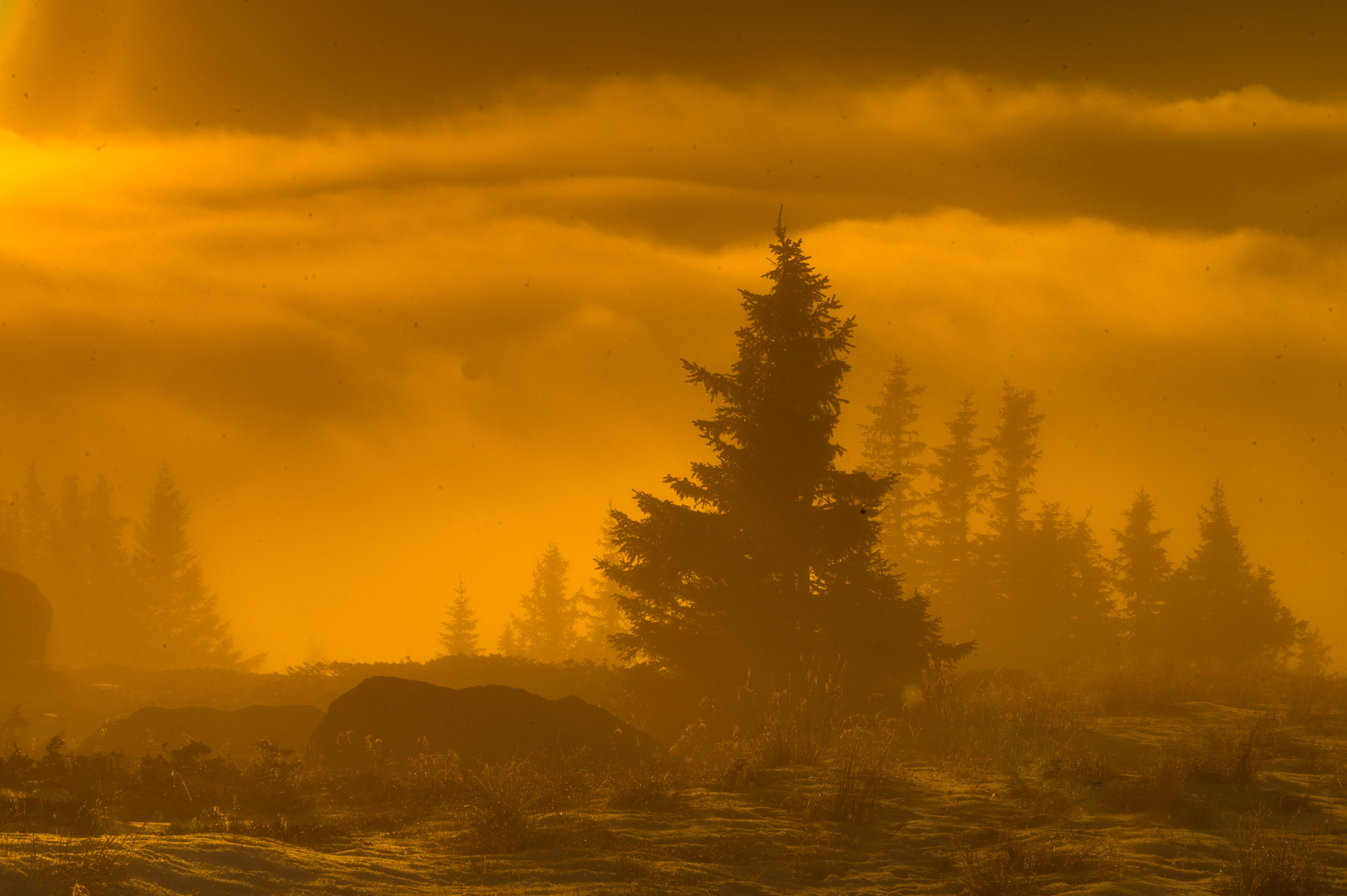 Photograph Misty sunset on top of the mountains by Jørn Allan Pedersen on 500px
