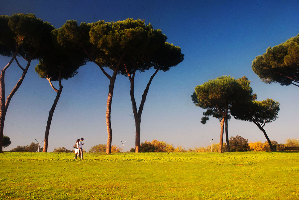 Photograph Walking couple by Marcello Ceraulo on 500px