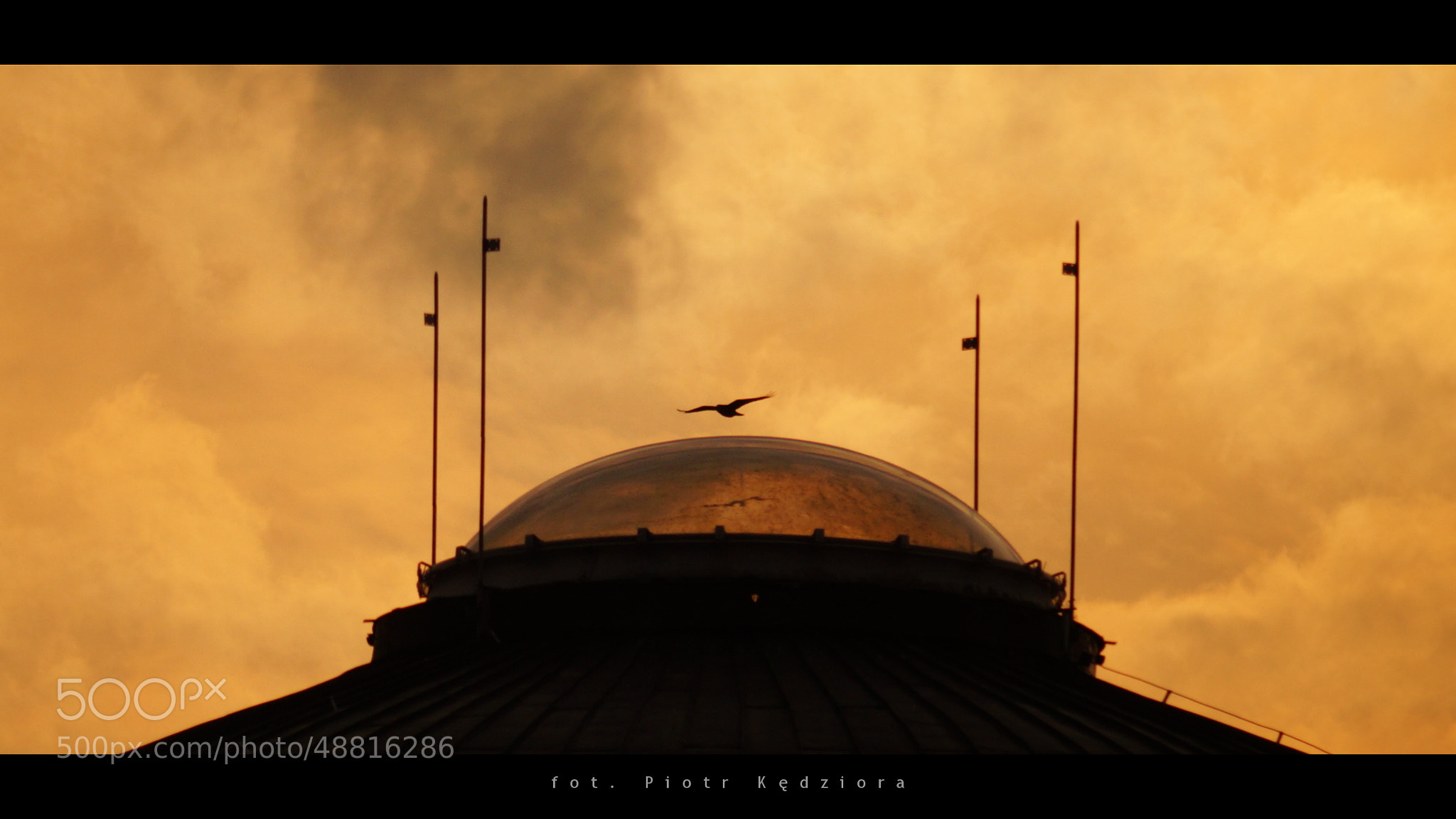 Photograph Dome and bird by ImI  on 500px