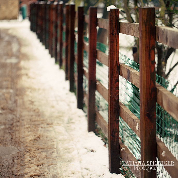 Photograph Love Fences... by Tatiana Spichiger on 500px
