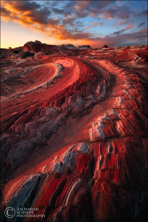 Photograph Red Dragon by Zack Schnepf on 500px