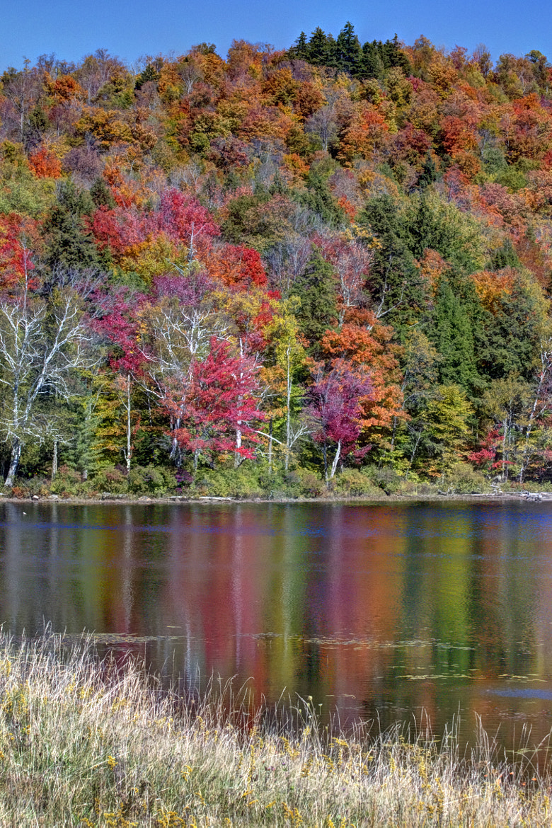 Photograph Autumn Afternoon at Tupper Lake by Maria Brown on 500px