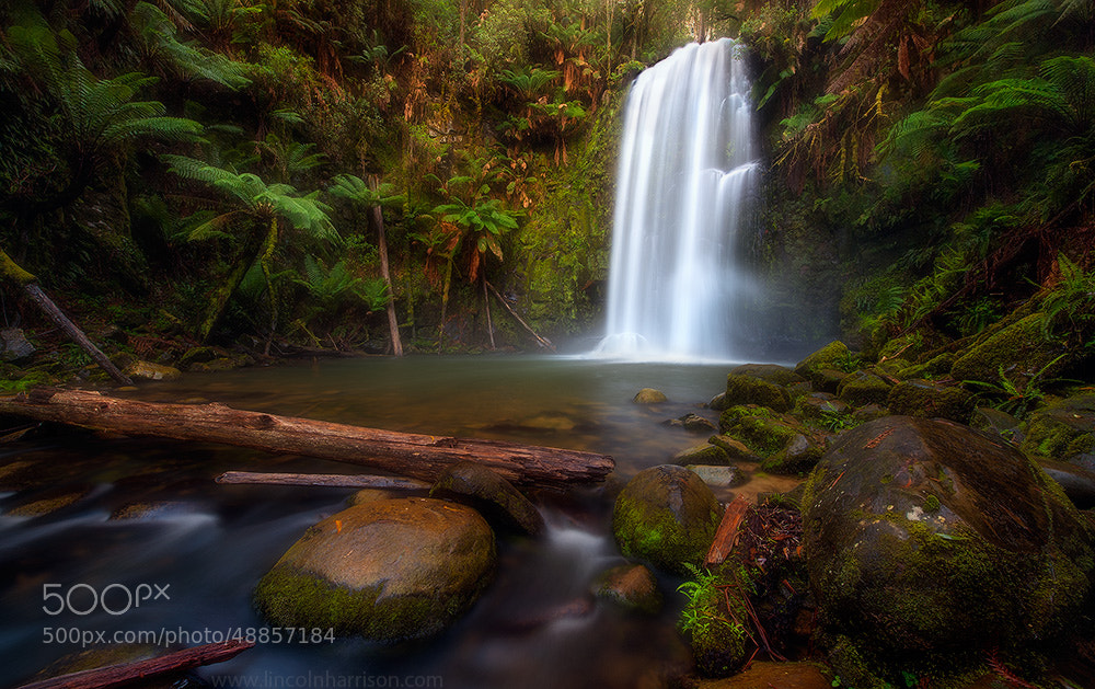 Photograph Beauchamp Falls II by Lincoln Harrison on 500px