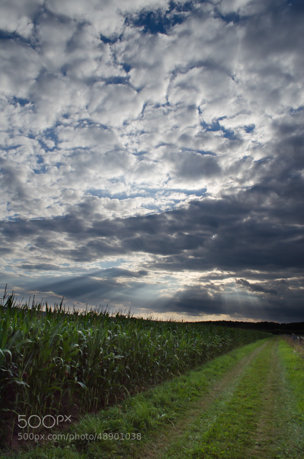 Photograph sky and more by Gunter Werner on 500px