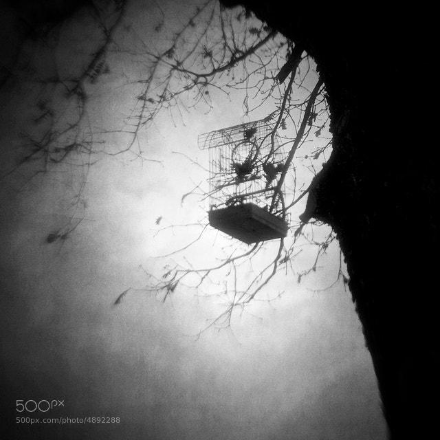 Photograph Set my mind free by Vangelis Bagiatis on 500px