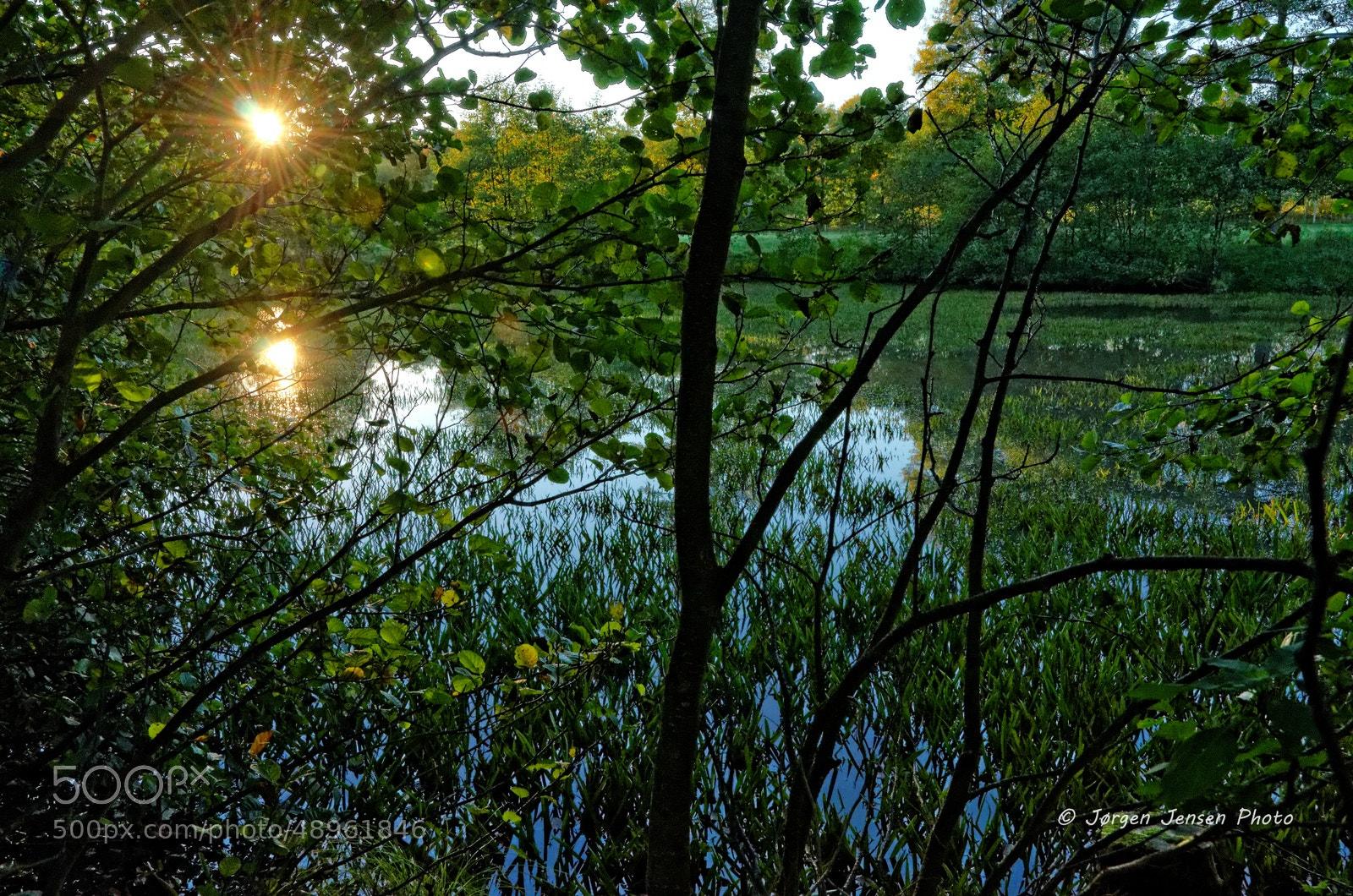 Photograph Low reflecting sun by Jørgen Jensen on 500px