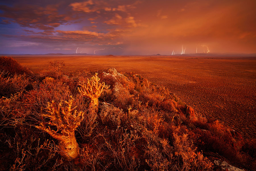 Photograph Karoo Blitzkrieg by Hougaard Malan on 500px