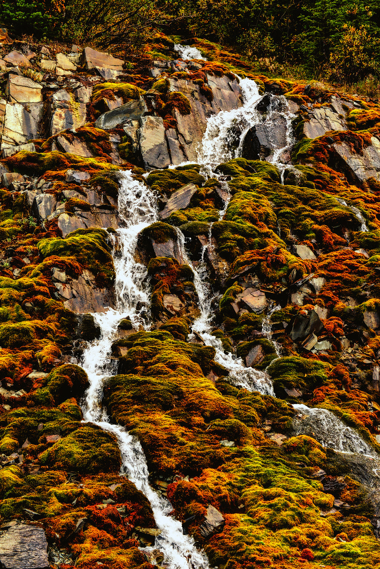 Photograph Fairy Tale Falls by Jeff Clow on 500px