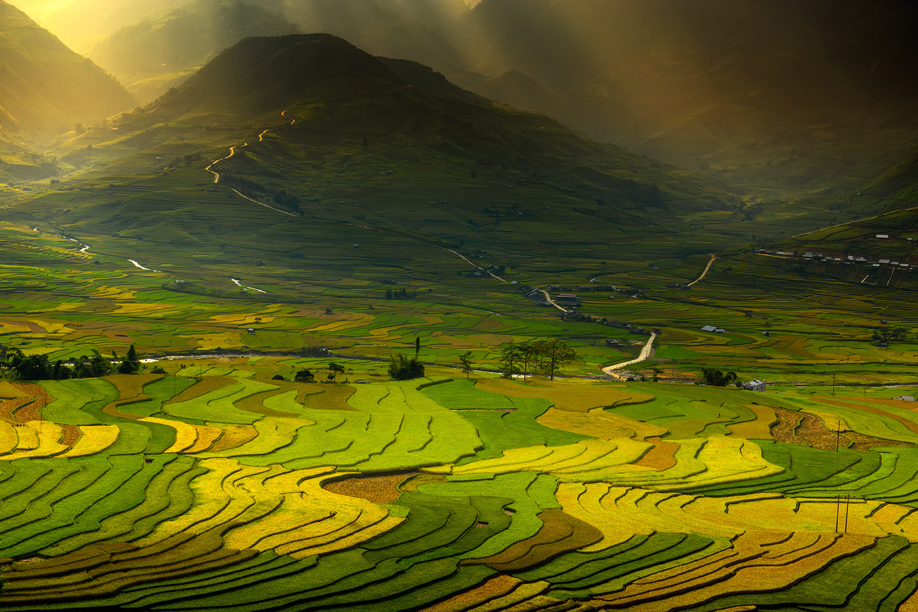 Photograph multi coloured rice fields by Ratnakorn Piyasirisorost on 500px