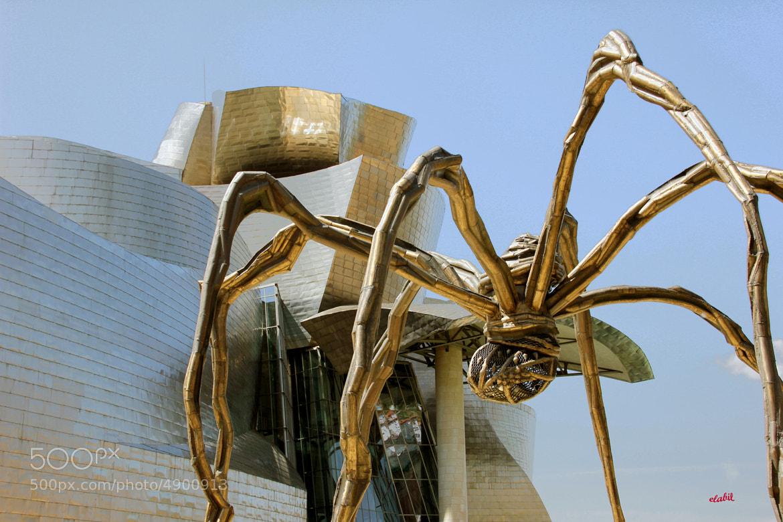 Photograph Guggenheim Bilbao by Eduardo Latorre on 500px