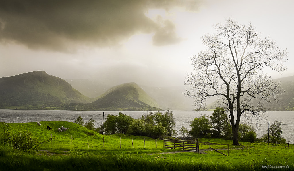 Photograph Irgendwo in Norwegen by Stefan Tiesing on 500px