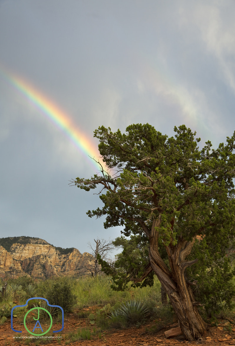 Photograph Rainbow over Sedona by Jack L. Aiello on 500px