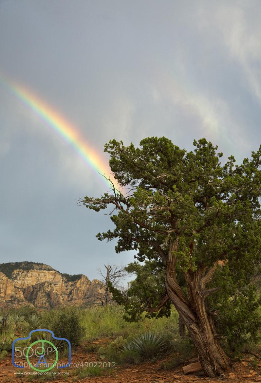 Photograph Rainbow over Sedona by Jack L. Aiello on 500px