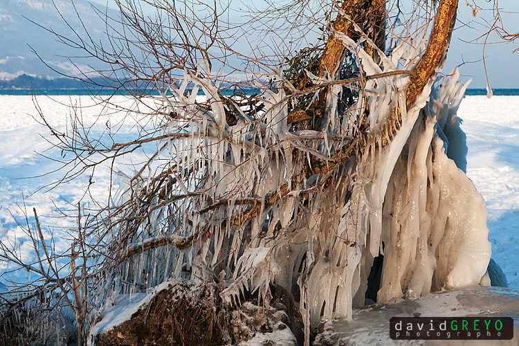 Photograph Very cold by David Greyo on 500px