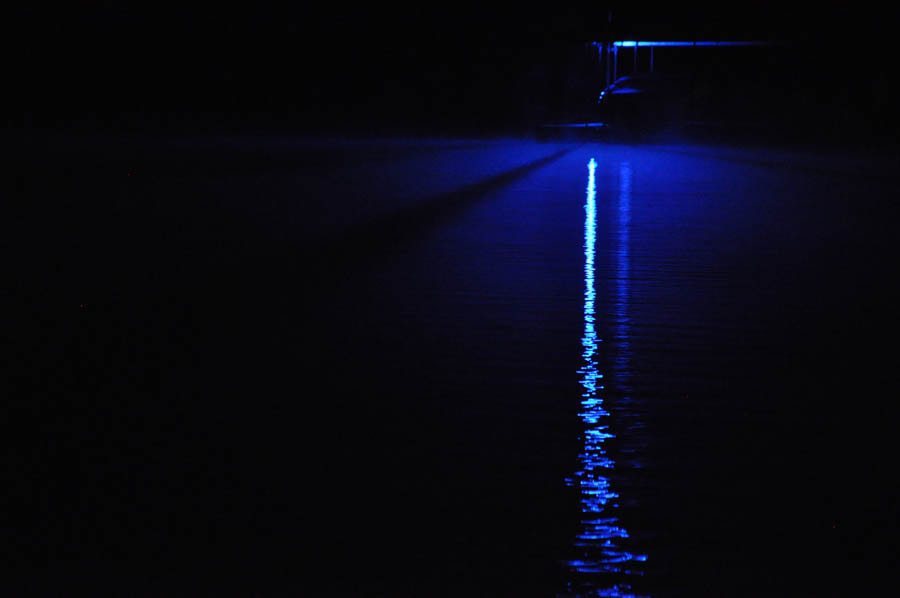 Photograph The Blue Light by Kyle Dyson on 500px