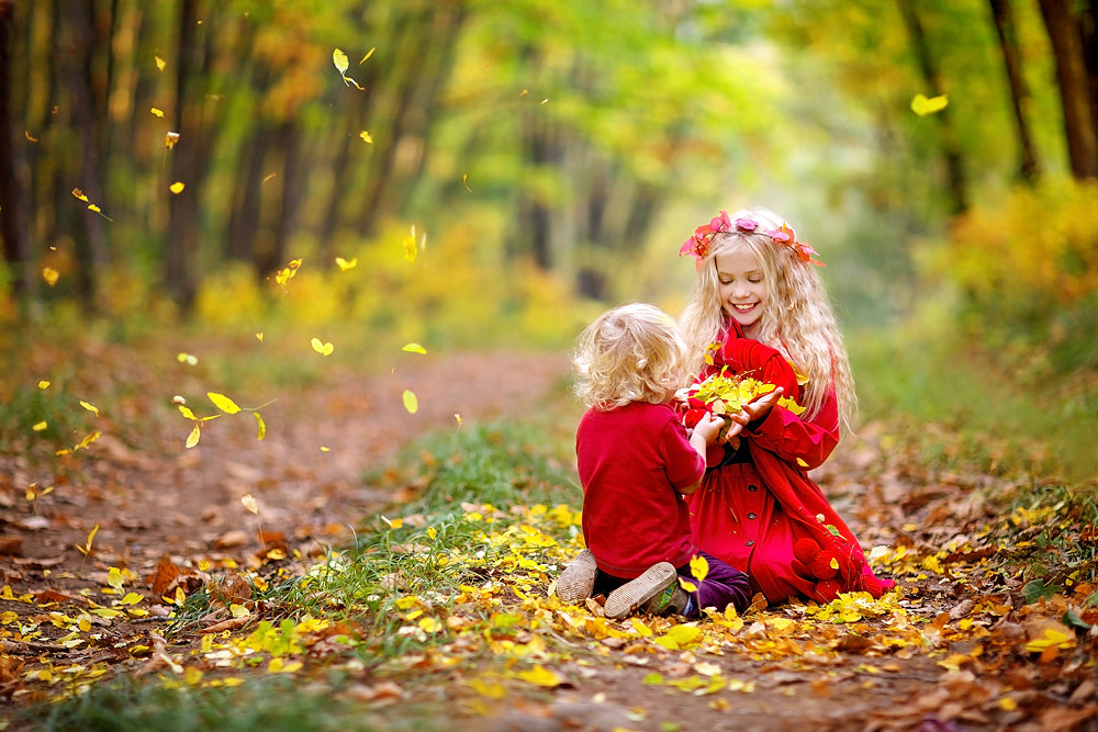 Photograph All autumn gold for you by Светлана Квашина on 500px