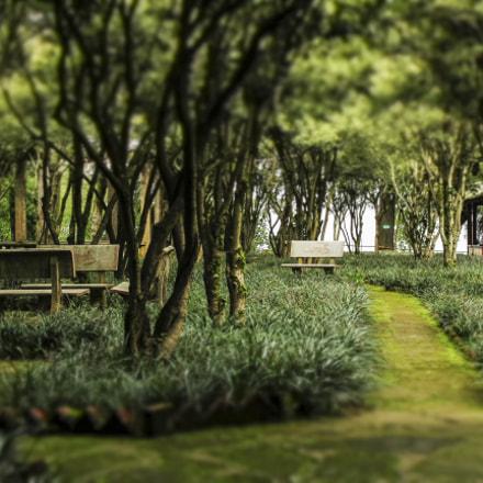 lost temple garden