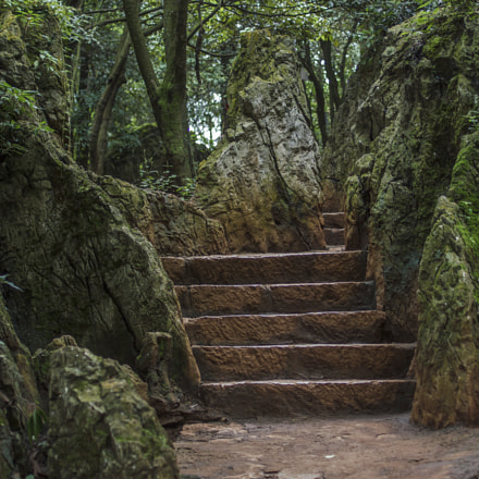 Stones and steps