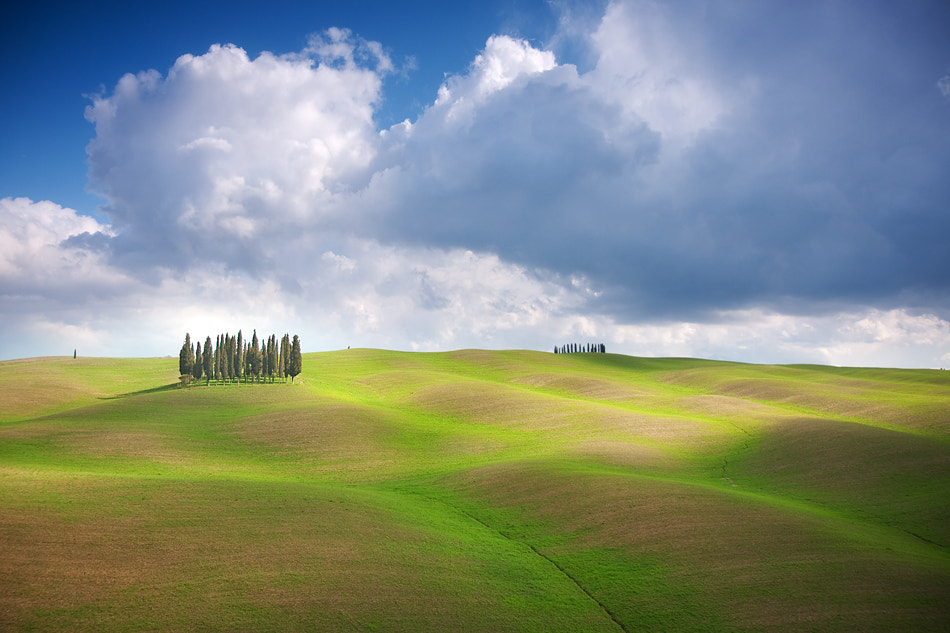Photograph After the spring storm by Marcin Sobas on 500px