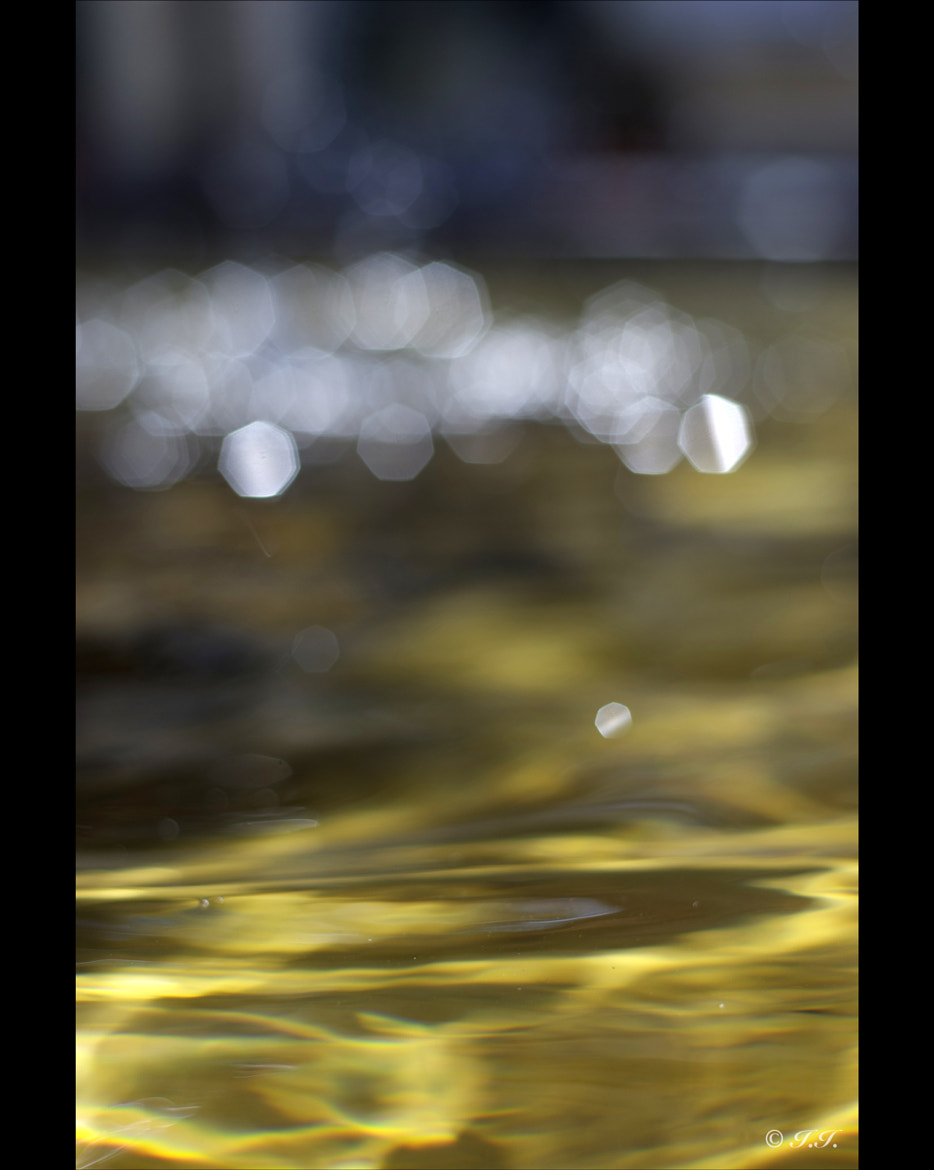 Photograph Acqua by ♫ Isa I. on 500px