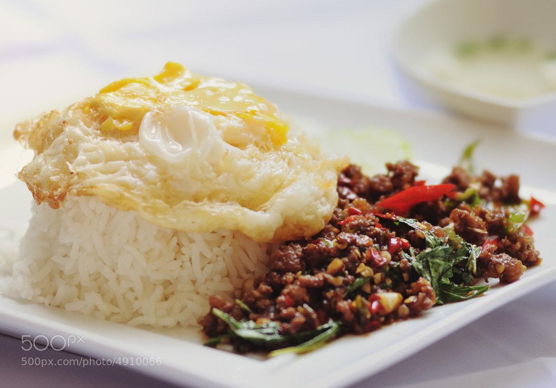 Photograph Stir Fried Basil by Narupon Pattarasoponkitkun on 500px