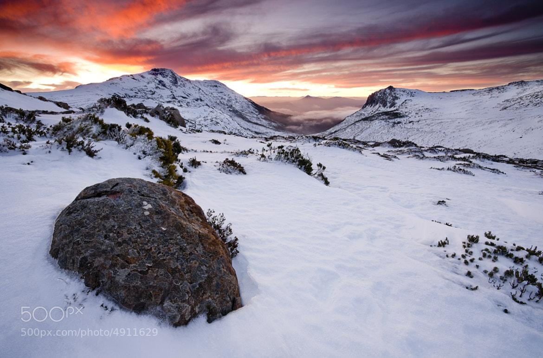 Photograph Mount Field National Park, Tasmania, Australia by Michael Gay on 500px