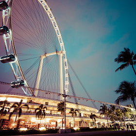 Singapore Flyer, palms, and the surrounding shops at dusk