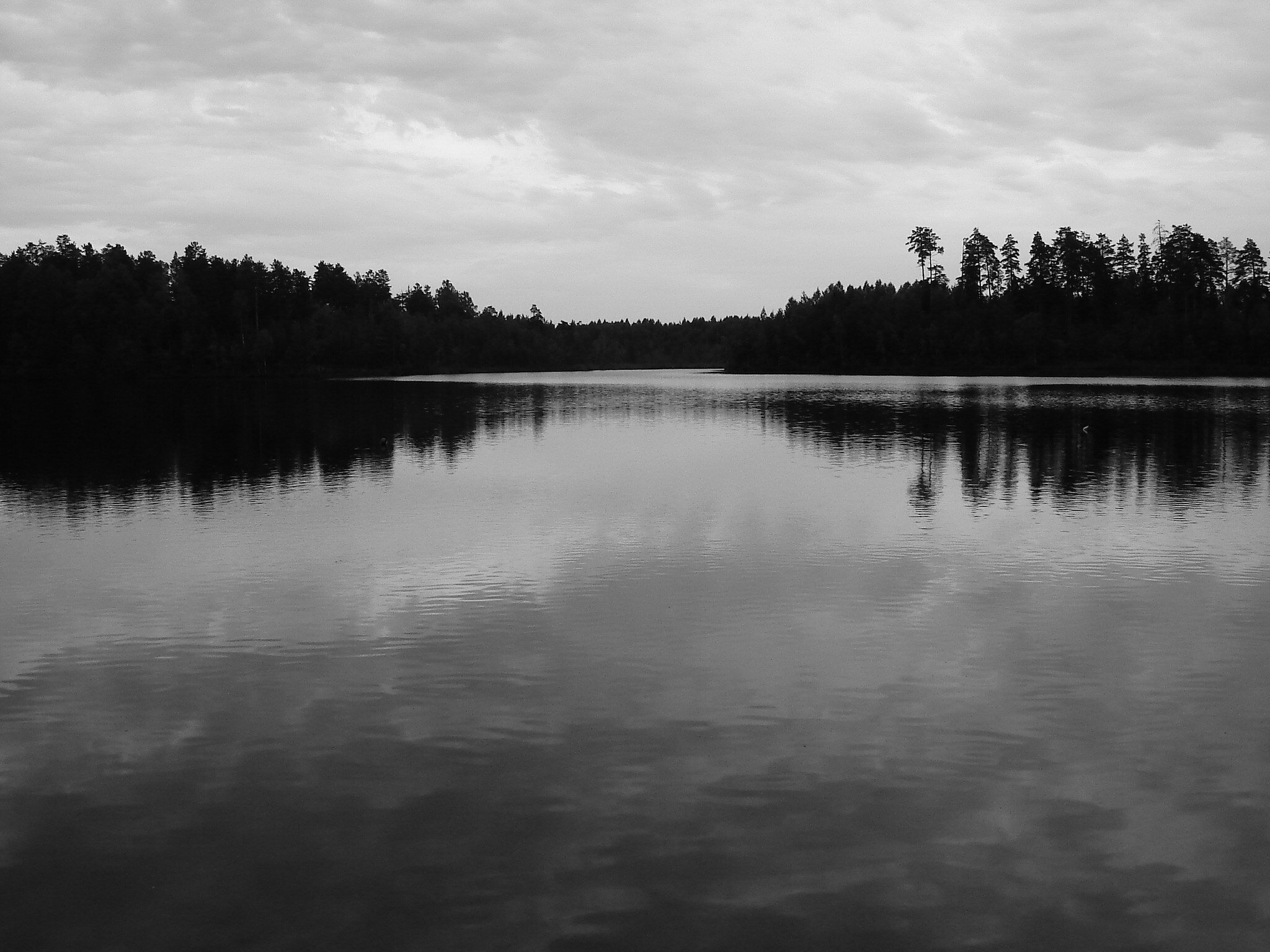 Photograph Forest lake by Olga Gavrilova on 500px