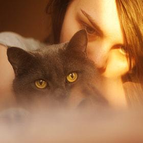 cats by Pandora Selezneva (pandora_selezneva) on 500px.com