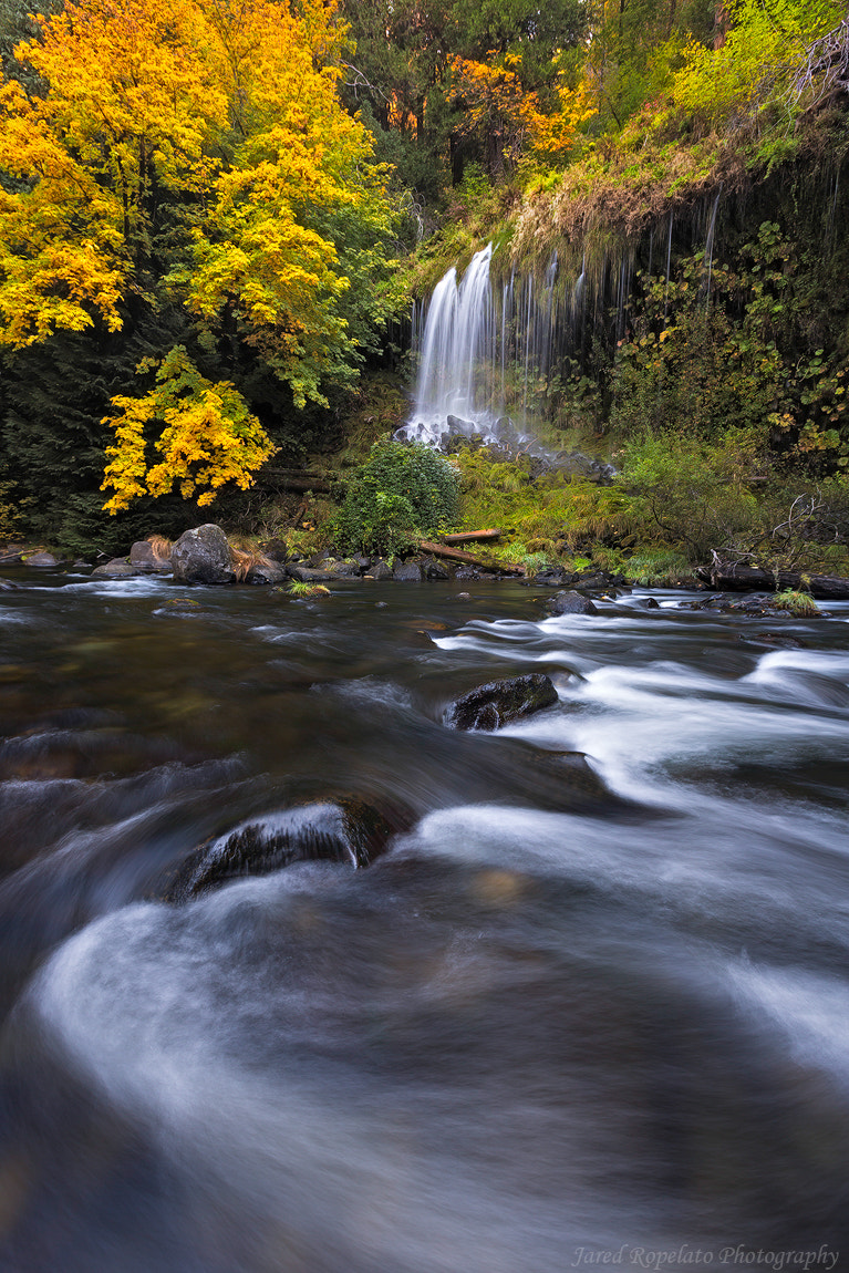 Photograph Water. Fall. by jared ropelato on 500px