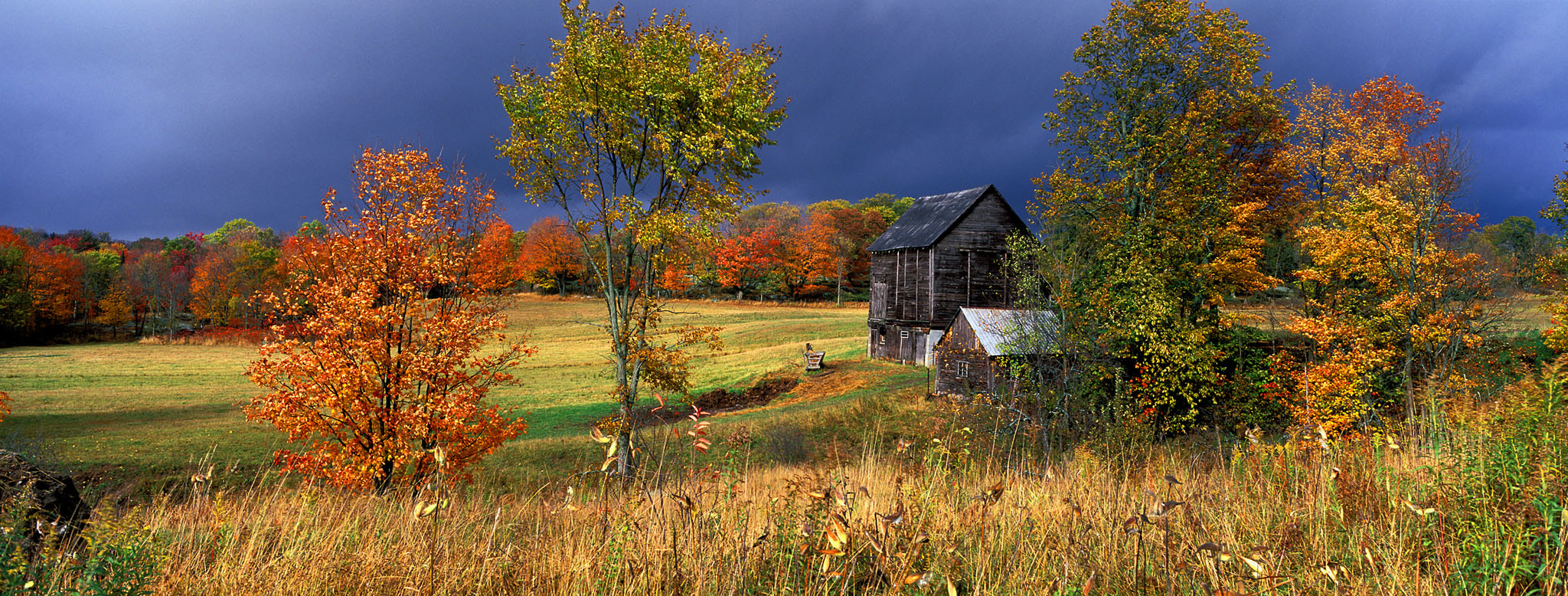 Photograph Orrville, Ontario by Ian Taylor on 500px