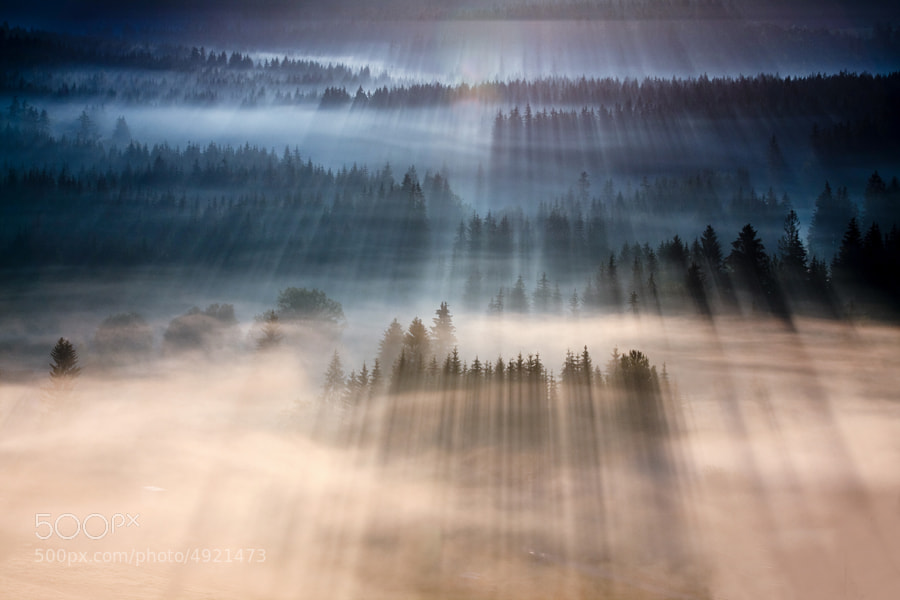 Rays by Marcin Sobas