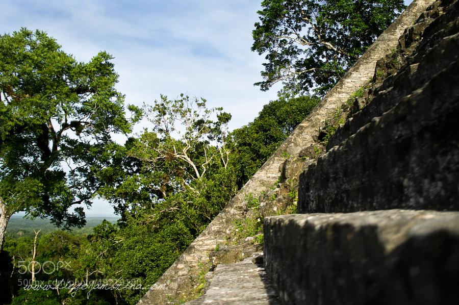 Los templos mayas se elevan por encima de la selva by Diego Jambrina on 500px.com